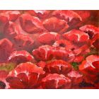 A Happiness of Poppies