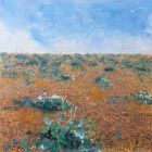 Seasons - Summer Shingle Beach & Crambe