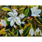 White magnolias - oil on canvas