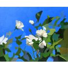 306103 White Roses of York, painting by Rhia Janta-Cooper