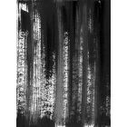 Black White abstraction 001