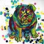 BRIGHT CHARISMA... POP ART PORTRAIT OF BULLDOG