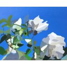 306104 White Roses of York II, painting by Rhia Janta-Cooper