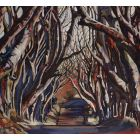 Dark Hedges Limited Edition Print (20/100)