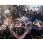 Spiritual Romantic Fascinating Large Painting I Want To Die In Another Galaxy 27 By O KLOSKA