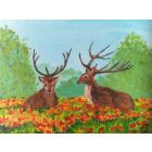 A couple of stags