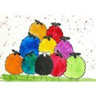 Colourful Sheep, It's Cool to be Different!