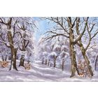 Winter woodland wonderland (Framed)