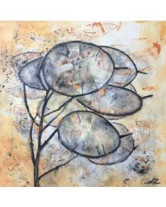 Lunaria Flower Charcoal Drawing