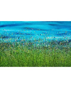 A Turquoise Wilderness #2