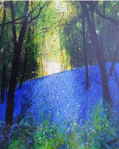 Bluebell Bank in Woodland