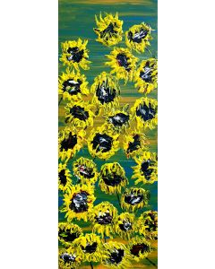 Blooming sunflowers 1