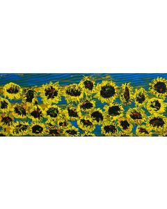 Blooming sunflowers 2