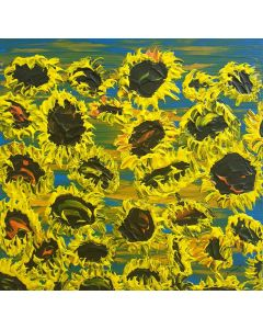 Blooming sunflowers 5