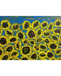 Blooming sunflowers 6