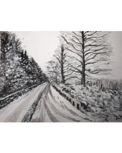 Snow-covered rural countryside road