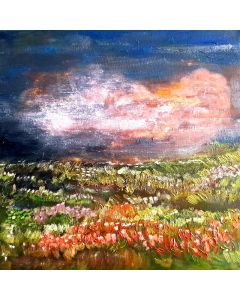 Pink Cloud and Flowery Meadow