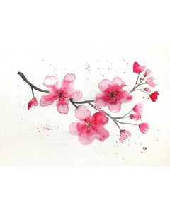 Pink cherry blossoms nr 2