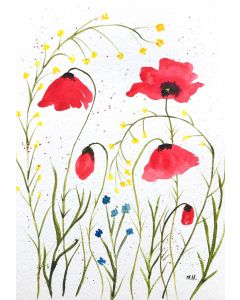 Red poppies flowers nr3