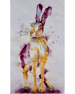 Hare with a stare No 2