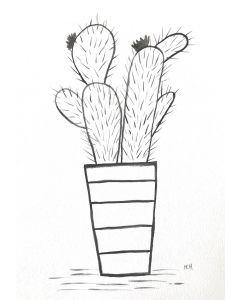 Cactuses line drawing