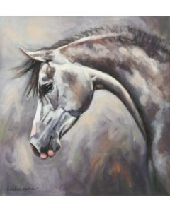Grey Arab Horse Painting
