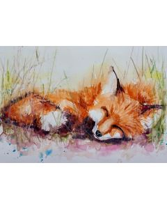 Fox 'Just taking a Nap'