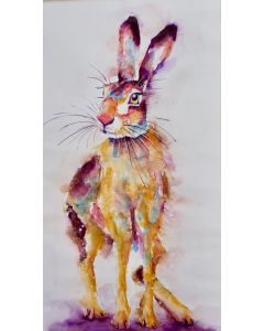 Hare with a Stare