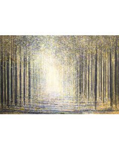 Forest Trees As Night Falls