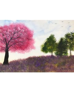 Cherry blossom and bluebells
