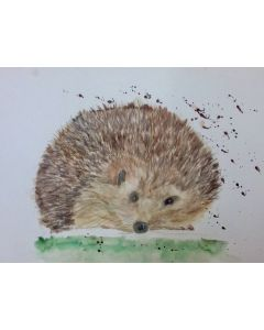 "Hedgehog 12""x 16"" watercolour"