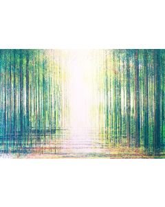 Spring Forest In Bright Light