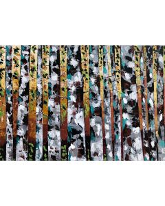 Birch Tree With Mix Leaves 104