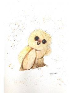 Baby owl A4