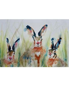 Hares  'Three of a kind'
