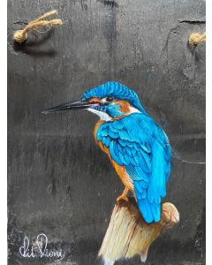 Kingfisher 5