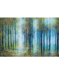 Forest Trees In Bright Spring Light