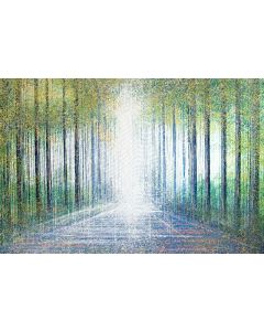 Avenue Of Trees In Bright Spring Light
