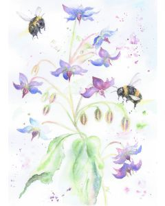 Bees and Borage