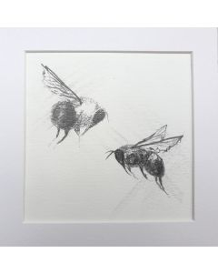 Bees on the Move