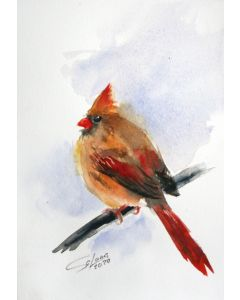 CARDINAL I - BIRD PORTRAIT