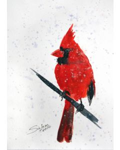 CARDINAL II - BIRD PORTRAIT