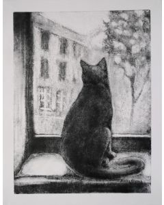 Cat Looking Out Of The Window