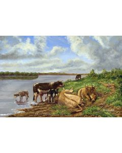 Cattle by the river (Framed)