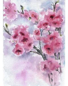 Cherry blossoms in Spring  - Floral Burst watercolors on handmade paper