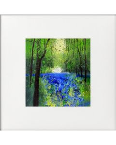 Seasons - Spring Clearing in the Bluebell Woods