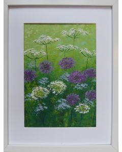 Cow Parsley and Alliums