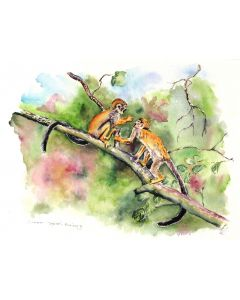 'Sibling Love' Common Squirrel Monkeys