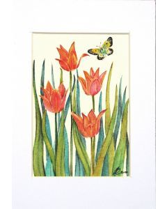 Butterfly on Cerise Tulips