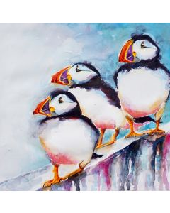 Puffins on Cliff Edge
